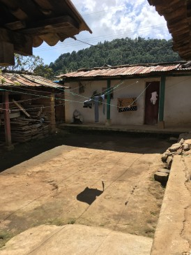 Zonia's House