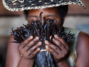 A worker checks for mold in vanilla pods at an Antalaha warehouse.