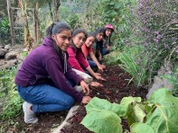 Learning about Sustainable Gardening