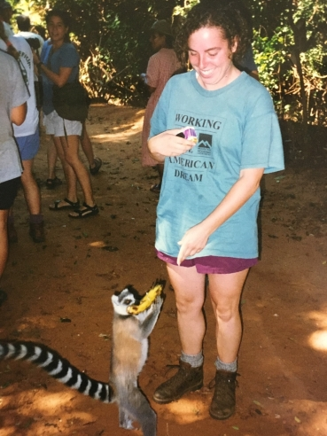 Ring tailed lemur as opportunist - that banana was not for him
