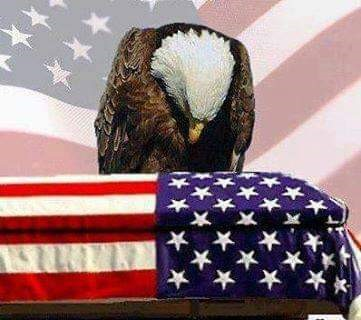 Eagle with flag Memorial Day