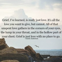 Grief is really just love quote