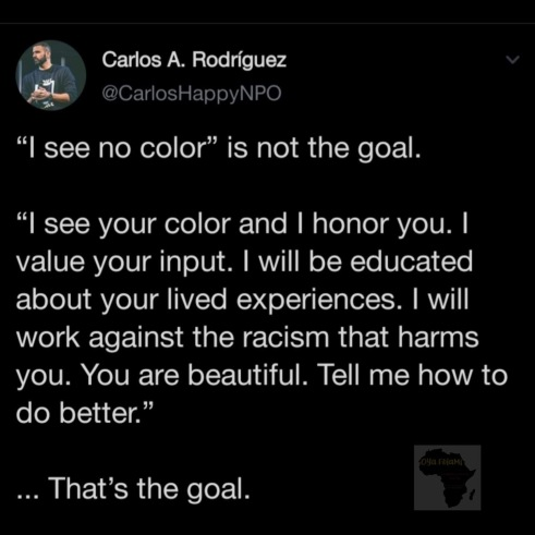 I see no color is not the goal
